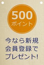 500ポイントプレゼントキャンペーン中